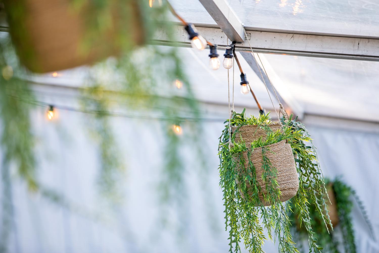 6. Mosseldiner 2019_detail hangplant