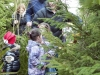 20131214-kerstbomen-in-de-akker-024
